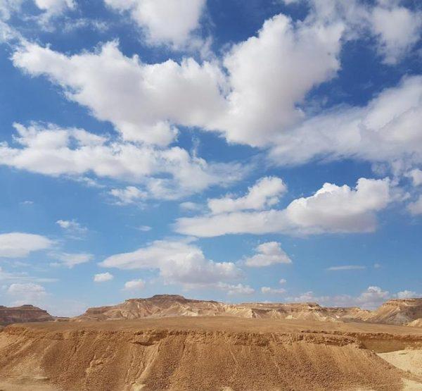 גלריית תמונות של המדבר שסביבנו